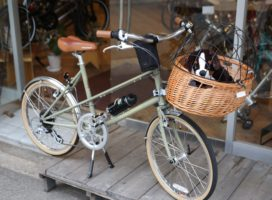 Bicycle with Dog